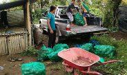 [Berita Foto] Relawan dan Anak-anak Posko GBKP Mengambil Sayuran untuk Kebutuhan Posko di Ladang Jemaat